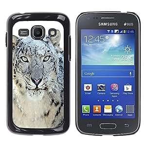 TECHCASE**Cubierta de la caja de protección la piel dura para el ** Samsung Galaxy Ace 3 GT-S7270 GT-S7275 GT-S7272 ** Snow Leopard Tiger Furry Winter Animal