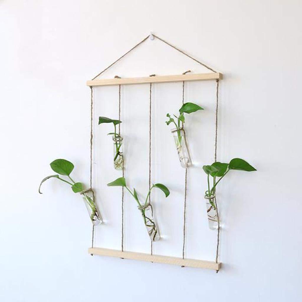 FidgetGear 1/Ensemble de Vase en Verre Transparent D/écoration de Maison /à Suspendre Tube /à essai Culture hydroponique