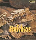 Anfibios, Rod Theodorou, 1432905635