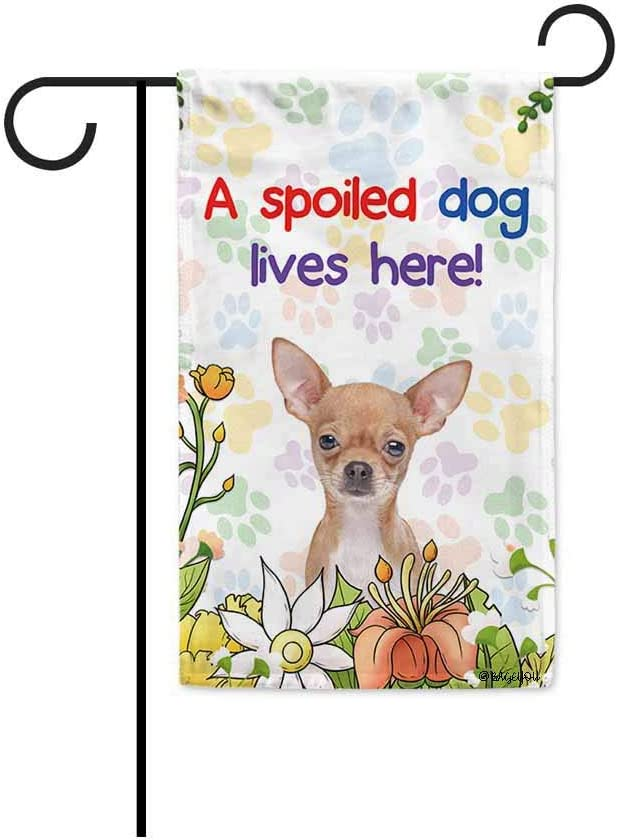 BAGEYOU A Spoiled Dog Lives Here Flowers Spring Summer Garden Flag Chihuahua Paw Print Home Decor Banner for Outside 12.5 X 18 Inch Printed Double Sided