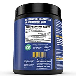 Raw Barrel\'s - Pure Creatine Monohydrate Capsules - 240 micronized pills - 700mg - SEE RESULTS OR YOUR MONEY BACK - With *FREE* Digital Guide