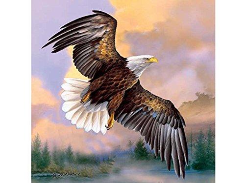 Envío rápido y el mejor servicio SunsOut 30787 - Puzzle Puzzle Puzzle (500 piezas), diseño de águila majestuosa  mejor moda