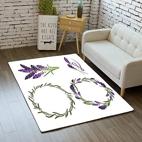 (iBathRugs Door Mat Indoor Area Rugs Living Room Carpets Home Decor Rug Bedroom Floor Mats,Provence Lavender Flower Bouquet Set)
