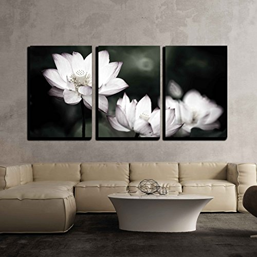 Beautiful Lotus Background Wall Decor x3 Panels