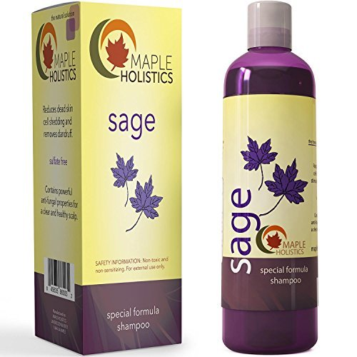 Maple Holistics Sage Shampoo for Anti Dandruff with Jojoba, Argan, and Organic Tea Tree Oil – Natural, Sulfate Free Treatment for Women and Men – Safe for Color Treated Hair ( 8 fl. oz.)