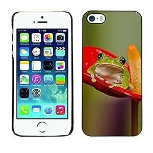 FECELL CITY // Duro Aluminio Pegatina PC Caso decorativo Funda Carcasa de Protección para Apple Iphone 5 / 5S // Anthurium Red Green Nature