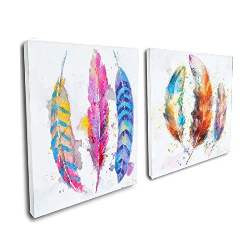 Crescent Art Framed Abstract Watercolor Bird Feather Painting on Canvas Print Picture Wall Art for Living Room Wall Decoration Home Accent (24 x 24 inch, Set Framed) ()