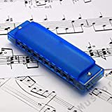 10 Holes Harmonica with Case Double Color
