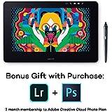 "Wacom DTH1320AK0 Cintiq Pro 13"" Creative Pen Display with Link Plus, HD LCD Graphics Monitor, Dark Gray"