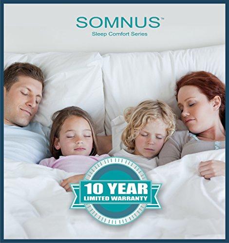 Somnus Sleep Comfort Series Zippered Fully Encased