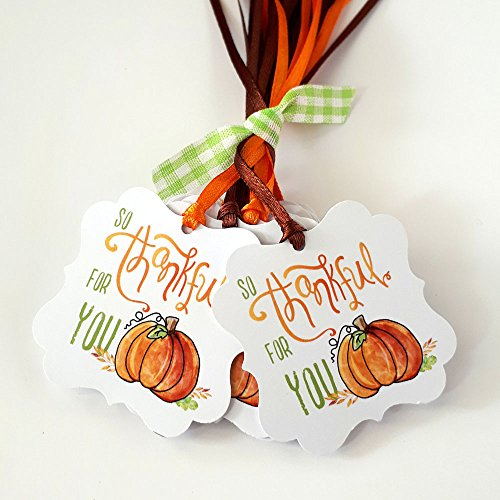 Autumn Pumpkin So Thankful For You Gift Tags - Thanksgiving Thank You Favor Tags - Set of 24 -