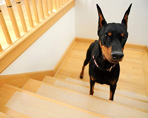 Kenley Non-Slip Stair Treads for Dogs and Pets - Pack of 4 Clear Step Strips 6''x24'' - Indoor & Outdoor - Anti-Slip Floor Vinyl Safety Grip Tape with Adhesive for Steps & Stairs - Fall Risk Prevention by Kenley (Image #1)