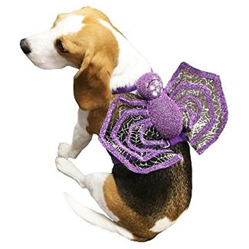 Spider Harness Dog Costumes (Target Purple Dog Harness with Detachable Spider - Doubles as a Costume - Small)
