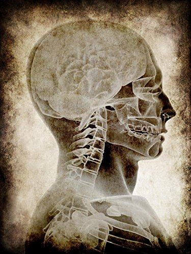 Wallmonkeys WM150512 Old Parchment with Skull Anatomy Peel and Stick Wall Decals (30 in H x 23 in W), Medium-Large ()