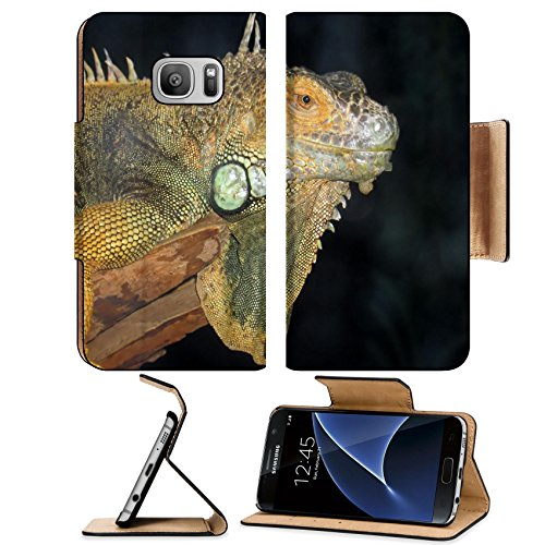 Liili Premium Samsung Galaxy S7 Flip Pu Leather Wallet Case A Macro Shot Of A Beautiful Iguana Photo 530241 Simple Snap Carrying