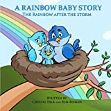 A Rainbow Baby Story: The Rainbow After the Storm: Volume 2 (Explain It To Me!)