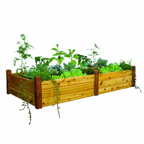 (Gronomics RGBT 48-95S 48-Inch by 95-Inch by 19-Inch Raised Garden Bed, Finished)