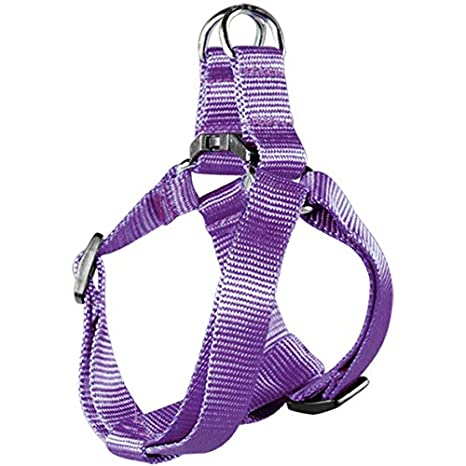 Arppe 2243011017 Arnés Nylon Basic, Purpura: Amazon.es: Productos ...