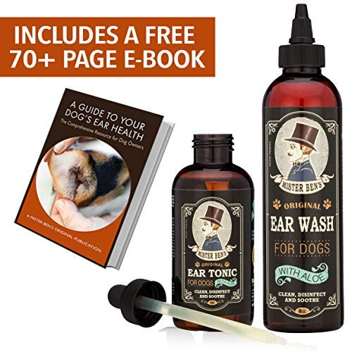 - Mister Ben's Most Effective Dog Ear Treatment Cleanser Ear Care Kit w/Aloe for Dogs – This Dog Ear Cleaner Provides Fast Relief from infections, itching, Odors, Bacteria, Mites, Fungus & Yeast