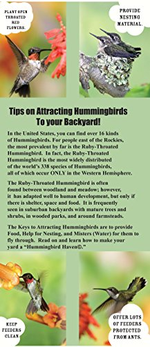 UPC 645194000902, Songbird Essentials SETIPSHUMBIRDS Tips On Attracting Hummingbirds To Your Backyard Brochure