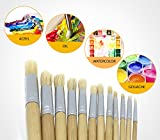 Artist Paint Brushes - Paint Brush Set - 12 pcs