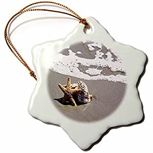 51ryJow7u1L._SS300_ 100+ Best Seashell Christmas Ornaments