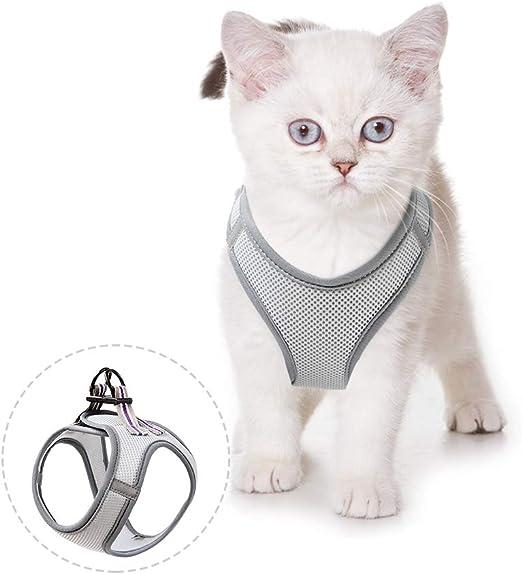 HEELE Arnés para Gato Ultra Ligero Suave y Cómodo Arnés Gato Uso de Diario Arnés para Gatos Ajustable y Reflectante: Amazon.es: Productos para mascotas