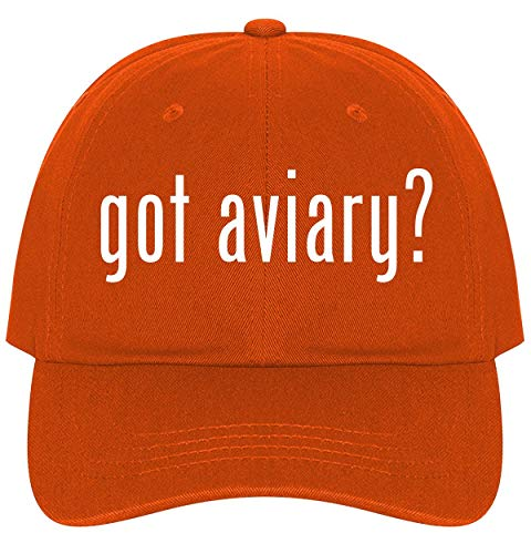 The Town Butler got Aviary? - A Nice Comfortable Adjustable Dad Hat Cap, Orange