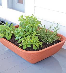 Double Walled Self Watering Herb Garden Planter, In Terra Cotta