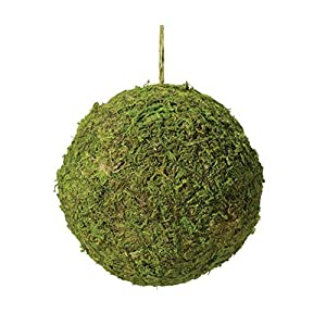 "Lillian Rose 5"" Moss Hanging Ball Decoration, 5.5"", 1"