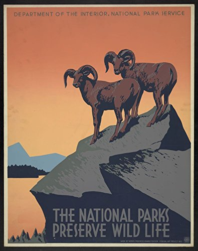 1936 Photo The national parks preserve wild life Poster for National Park Service promoting travel to national parks, showing two bighorn ()