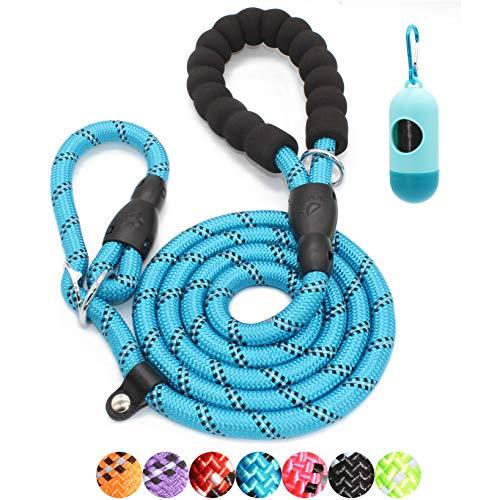 BAAPET 6 Feet Slip Lead Dog Training Leash for Large, Medium, Small Dogs (Blue)