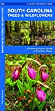 South Carolina Trees & Wildflowers: A Folding Pocket Guide to Familiar Plants (Wildlife and Nature Identification)