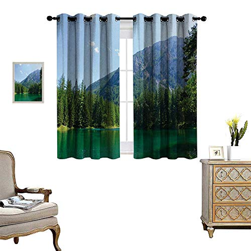 (Anyangeight Nature Room Darkening Wide Curtains Lake Surrounded by Forest at Mountain Valley Austrian Rural Scenery Decor Curtains by W63 x L72 Pale Blue Hunter Green)