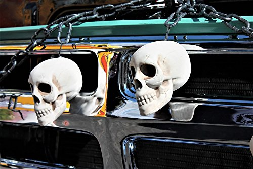 Home Comforts Canvas Print Trunk Or Treat Skulls Halloween Trick Or Treat Stretched Canvas 10 x 14 for $<!--$49.99-->