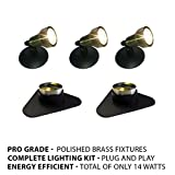 Patriot Brass LED Waterproof Pond and Landscape Lighting 14 Watt Light Kit P-C4