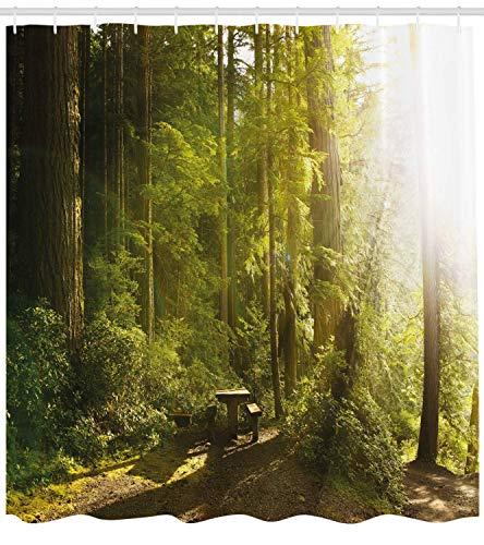 (Lohebhuic Nature Shower Curtain Sunny Rainforest with Wood Bench in Olympic National Park Washington USA Photo Fabric Bathroom Decor Set with Hooks,65.52