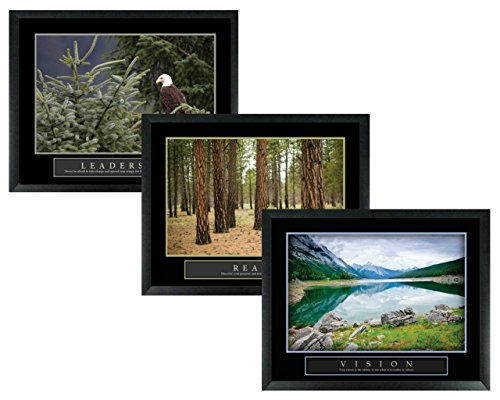 wallsthatspeak 3 Framed Leadership Forest Eagle Vision Mountain Reach Trees Motivational Posters 22x28 Home Office Decor ()