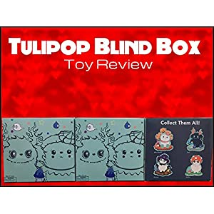Review: Tulipop Blind Box Toy Review