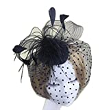 CaliaDress Women Fascinator Clip Headpiece Wedding Bridal Birdcage Veil C002TS