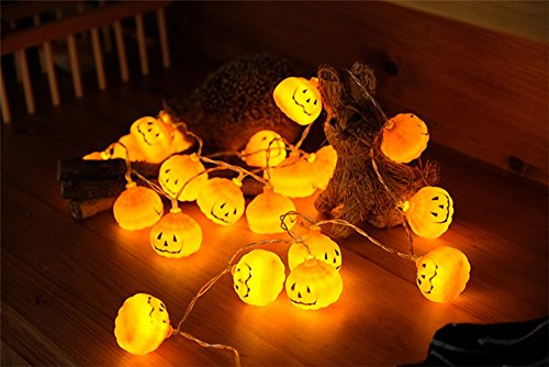 Pumkin String Light Battery Operated Halloween Party Decoration,20 LED Fairy Lights Copper Wire (20 LED Lights)