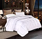 DUVET INSERT Luxury White Down Alternative Quilted Reversible Comforter/Bedspread Ultra Fluffy w/Plush Polyester Fill Lightweight Machine Washable Box Stitched Design (White, Twin XL (68x92))