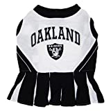 Oakland Raiders NFL Cheerleader Dress For Dogs - Size Small