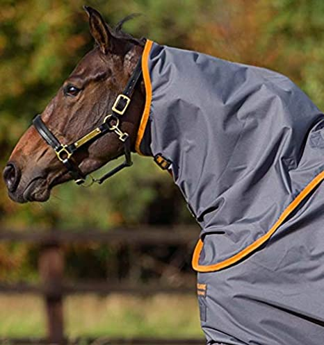 Horseware Ireland Amigo Hero-6 Turnout Plus Lite, Excalibur/Orange 78