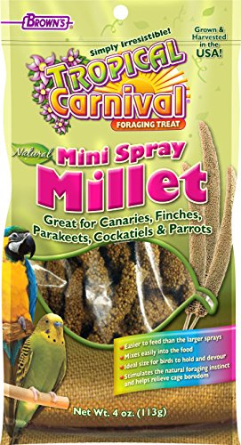 F.M.Brown's Tropical Carnival Natural Mini Spray Millet 4 oz. (Spray Millet compare prices)