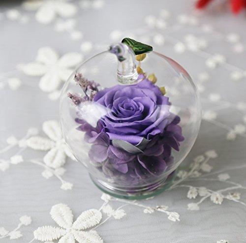 Amoleya Preserved Rose in Apple-shaped Glass,Gift on Valentine's Day, Mother's Day, Thanksgiving Day, Christmas, Birthday, Anniversary, Wedding by Amoleya
