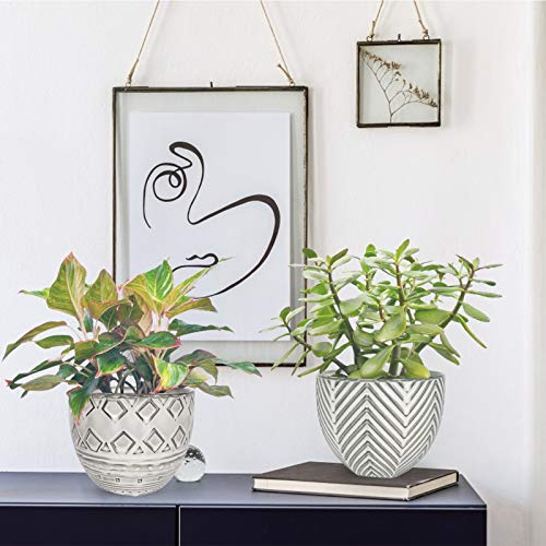 KORAM 5.5 Inch Ceramic Indoor Flower Plant Pots, 2 PCS Decorative Planter Flower Pot for Succulent Plant, Flowers, Herbs, Cactus with Drain Hole, Planters Indoor Decoration Set(Plants Not Included)