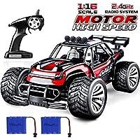 joylink Electric RC Car 1:16 RC Car Racing