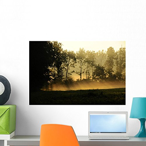 - Sunrise Sends Rays Light Wall Mural by Wallmonkeys Peel and Stick Graphic (24 in W x 16 in H) WM311689