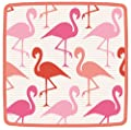 Entertaining with Caspari Flamingo Strut Square Salad-Dessert Plates, Pink, Pack of 8